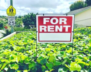 For rent signs are popping up everywhere nowadays